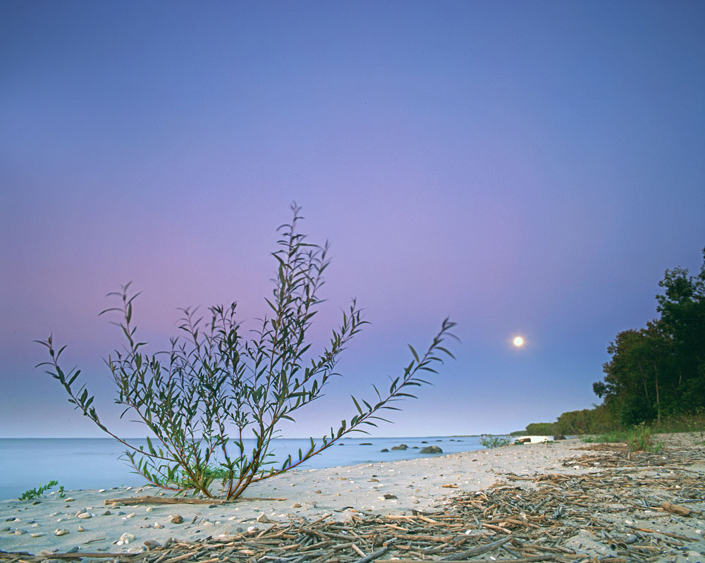 Blue Moon Zippel Bay State Park