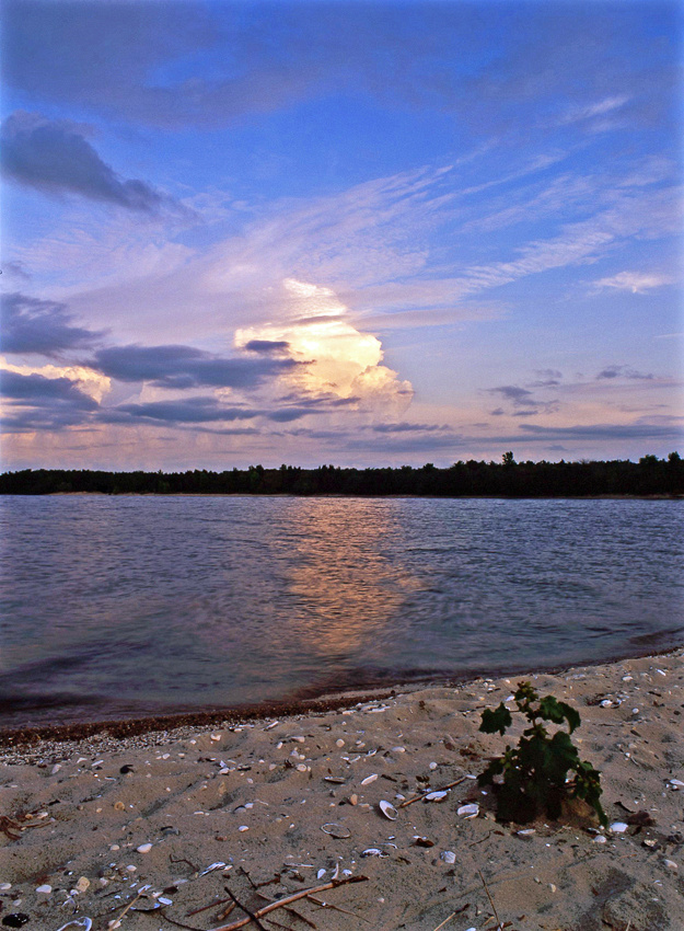Zippel Bay