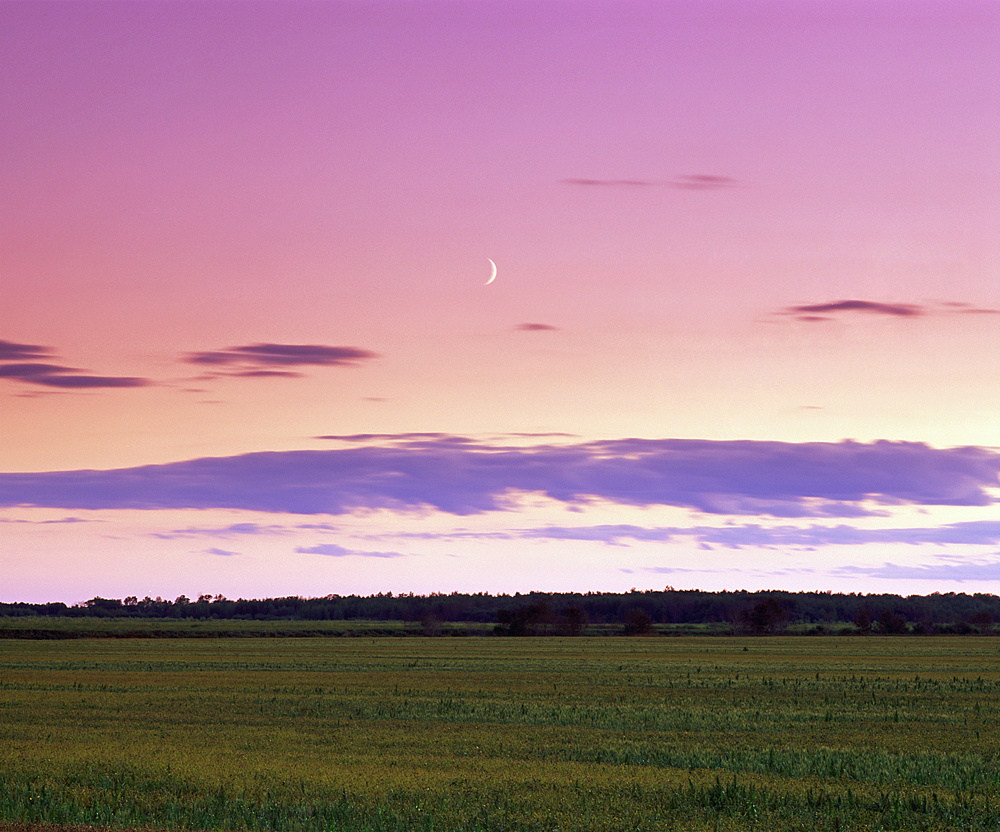 Moon Over Roseau