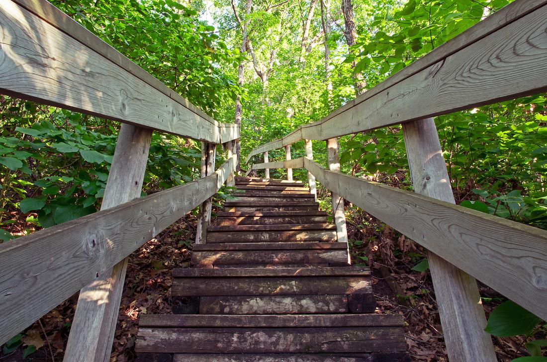 Riverview Trail Steps