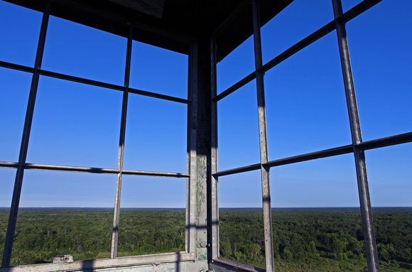 The Fire Tower View