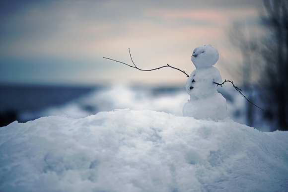 Perfect Little Snowman