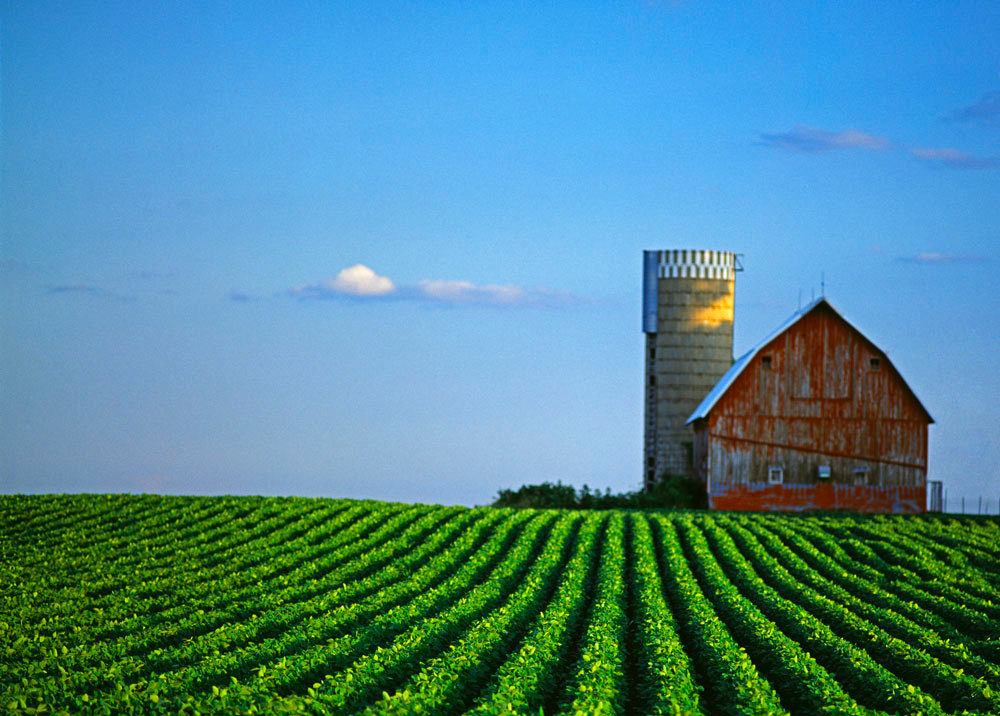 Minnesota Farm Scene