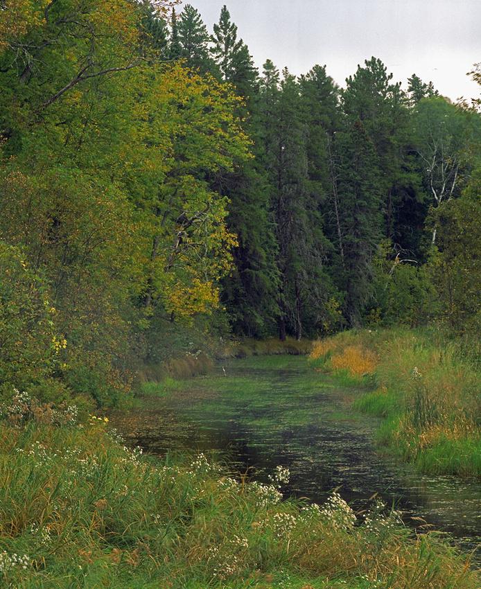 North Branch Rapid River